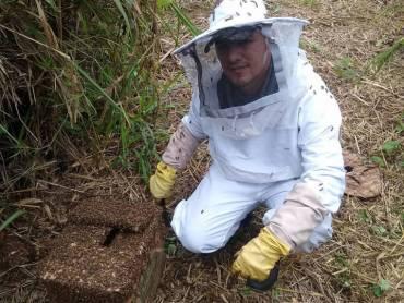 Esposos, periodistas y defensores de las abejas