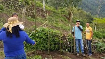 En Buenavista le apuestan a formar jóvenes para el relevo generacional en el campo