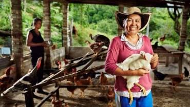 6 líneas de crédito para el sector campesino